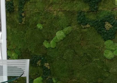 Musgo preservado jardin vertical