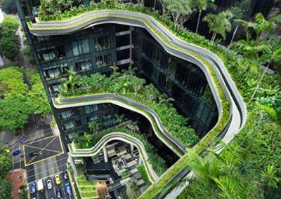 Cubiertas vegetales hortus vertical jardineria