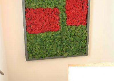 Musgo preservado cuadro vivienda jardin vertical