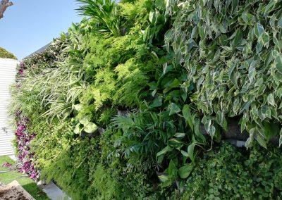 Jardines Verticales - Hortus Vertical
