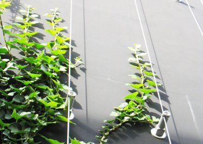 Otras soluciones - Hortus Vertical - Jardines Verticales