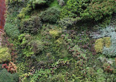 01 Jardines verticales - Hortus vertical