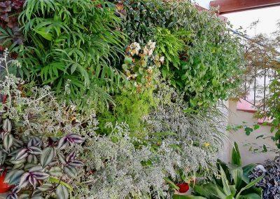 04 Jardines verticales - Hortus vertical