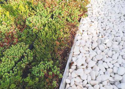 06-Cubiertas-vegetales-Hortus-vertical