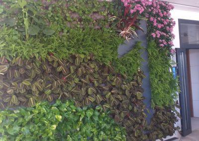 06 Jardines verticales - Hortus vertical