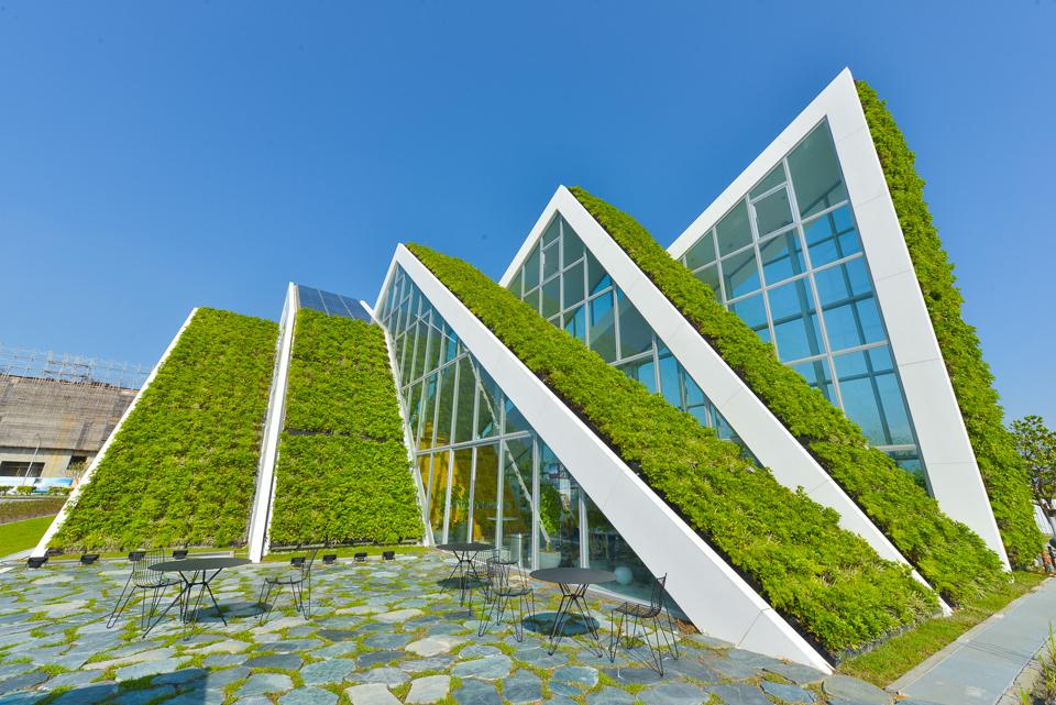 Isla de calor, cómo reducirla con las cubiertas vegetales y los jardines verticales